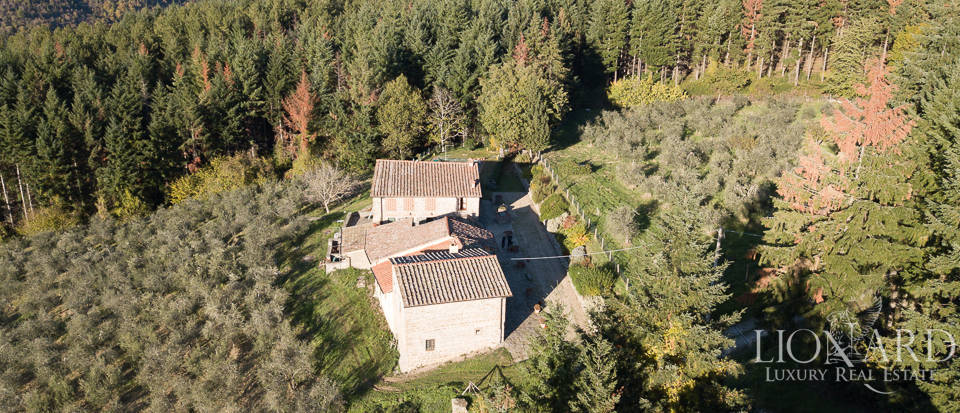 Farmstead with swimming pool for sale in Florence Image 3