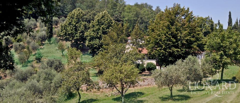 FARM FOR SALE TUSCANY ITALY