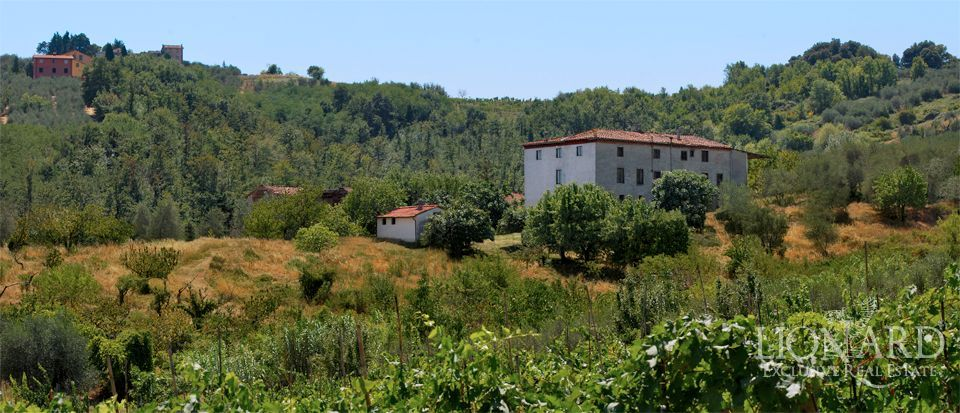 EXCLUSIVE REAL ESTATE NEAR LUCCA