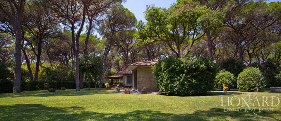 luxury villa in the pine forest of roccamare
