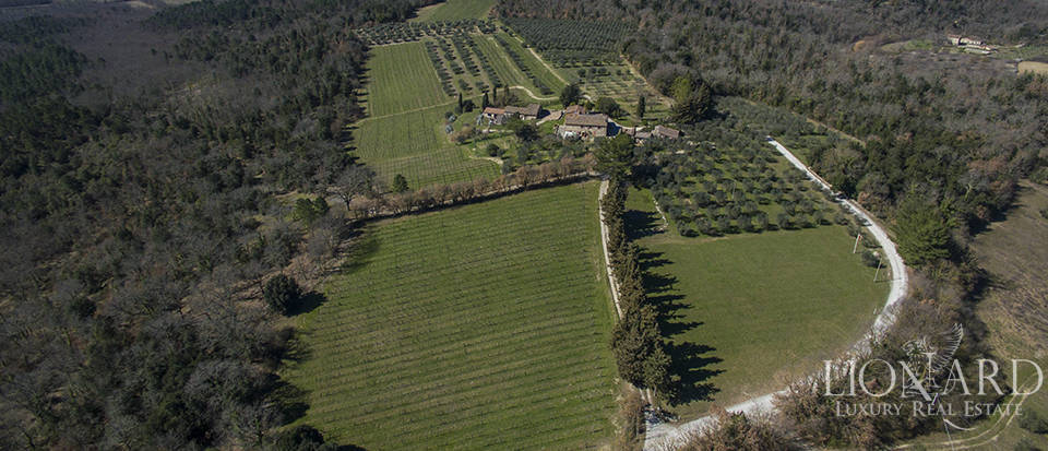 tuscan farmstead for sale near siena