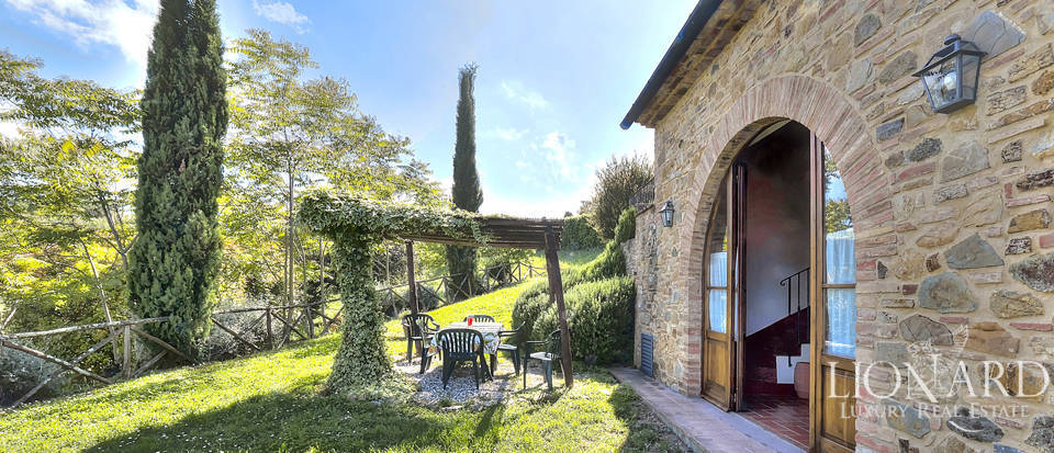 Farmhouse in Chianti, covered by olive groves Image 1