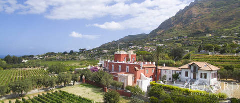 magnificent luxury villa with vineyards in ischia