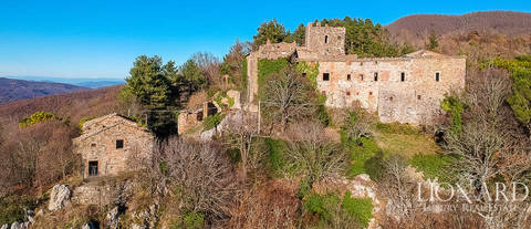 old castle with immense grounds for sale near siena