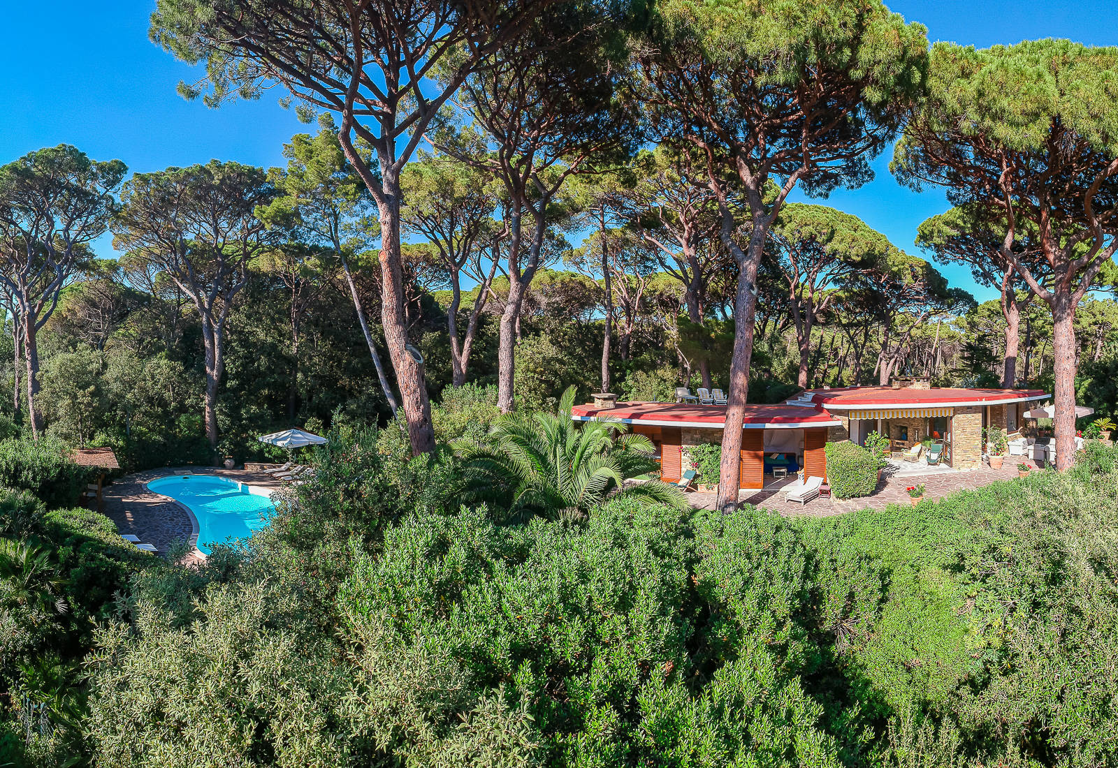 wonderful villa in roccamares pine forest