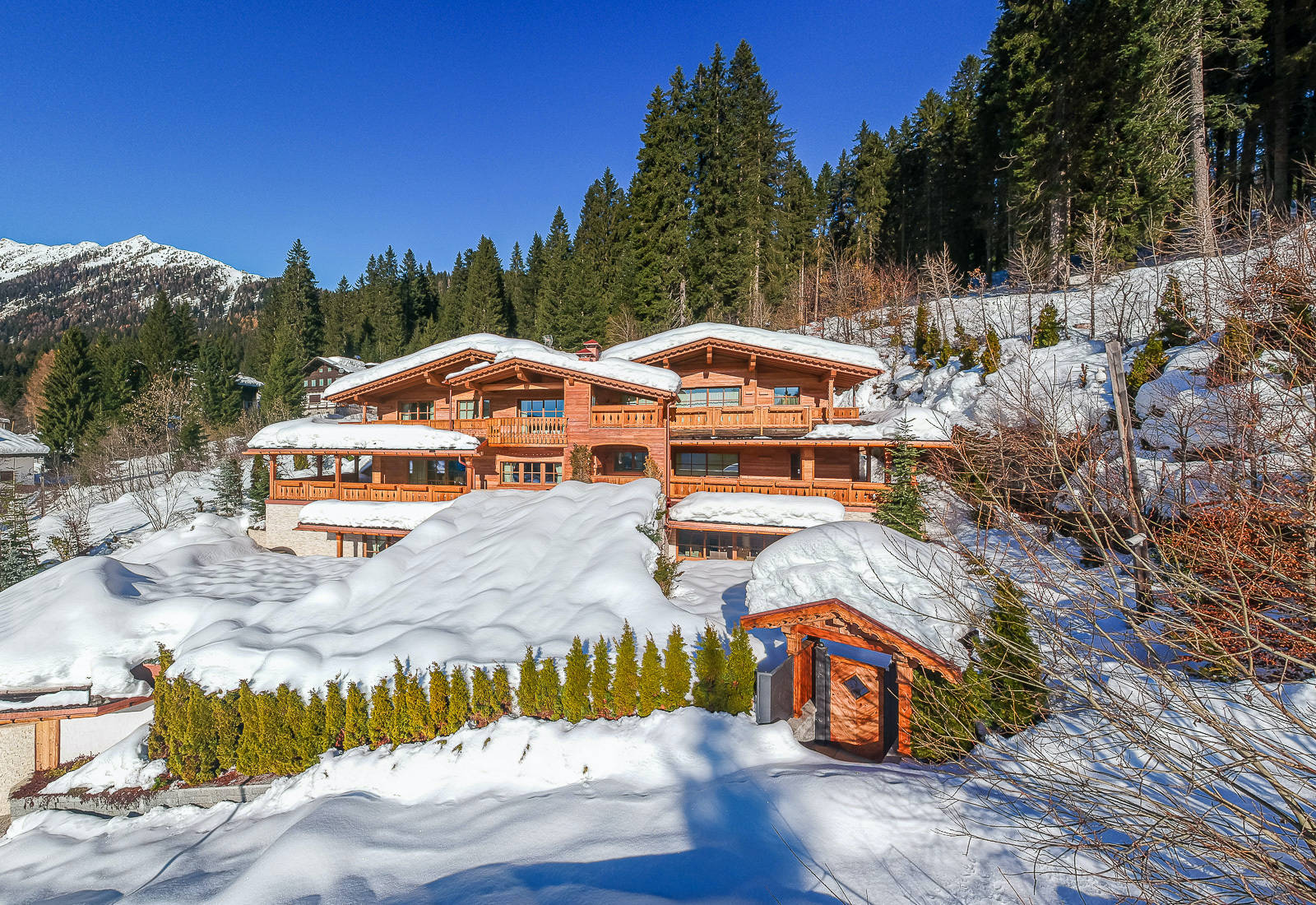 Luxurious chalet surrounded by nature for sale in Madonna di Campiglio