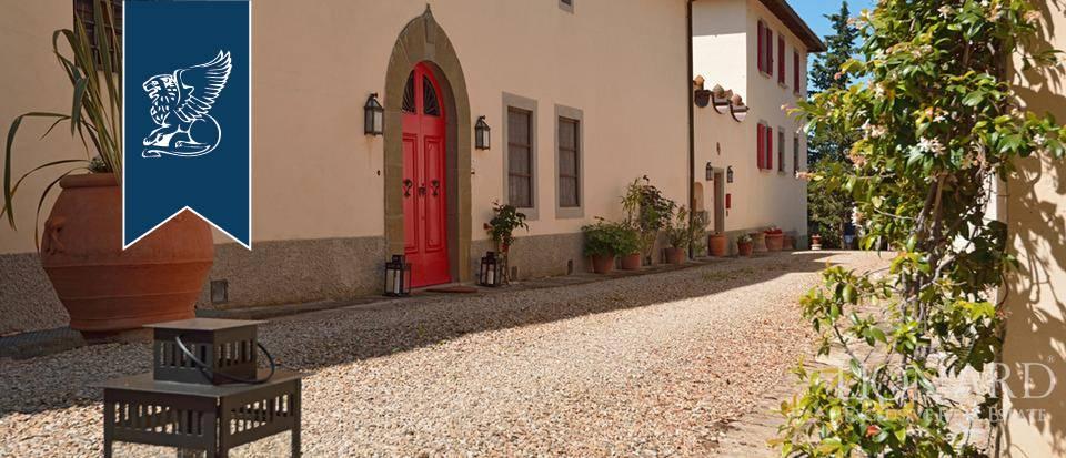 Azienda in Vendita a Bagno A Ripoli: 0 locali, 6500 mq - Foto 2