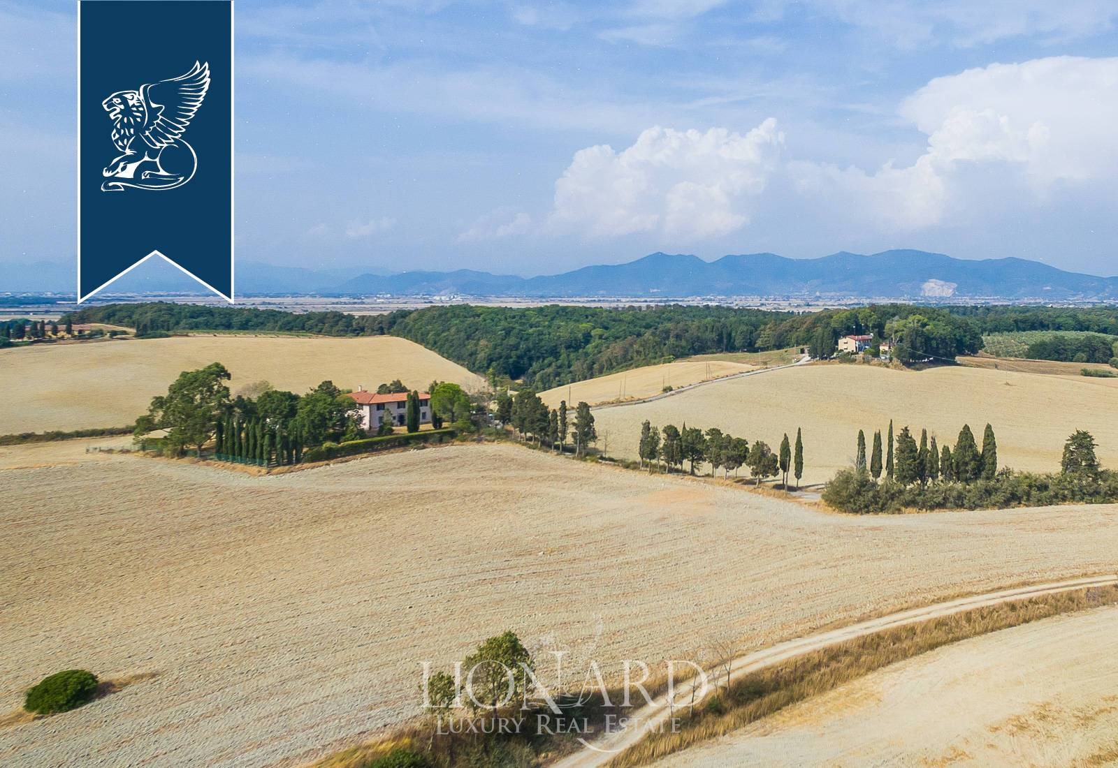 Rustico in Vendita a Collesalvetti: 0 locali, 600 mq - Foto 4