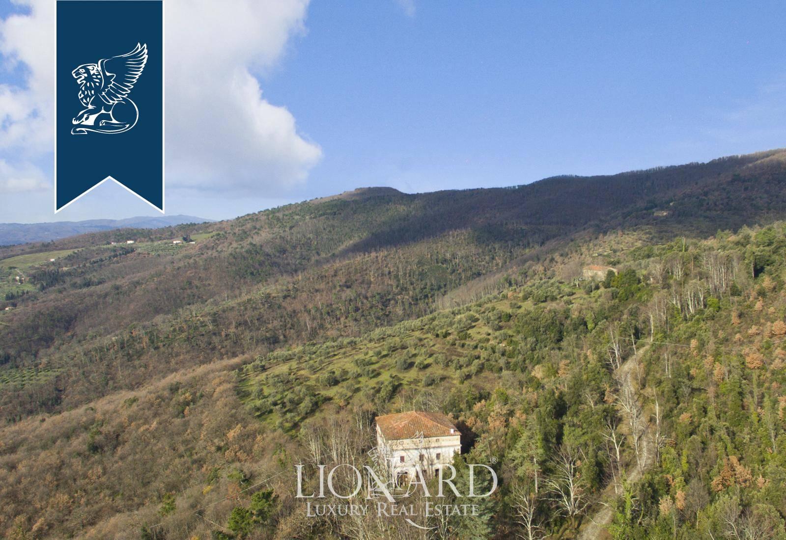 Azienda in Vendita a Montale: 0 locali, 4135 mq - Foto 8