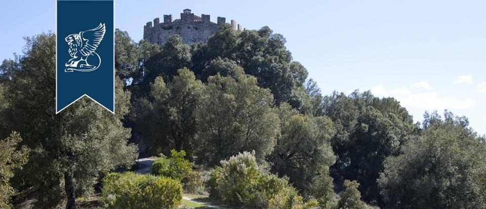 Villa in Vendita a Sovicille: 0 locali, 600 mq - Foto 6