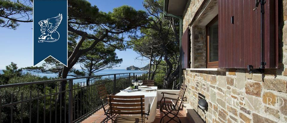 Villa in Vendita a Castiglione Della Pescaia: 0 locali, 800 mq - Foto 1