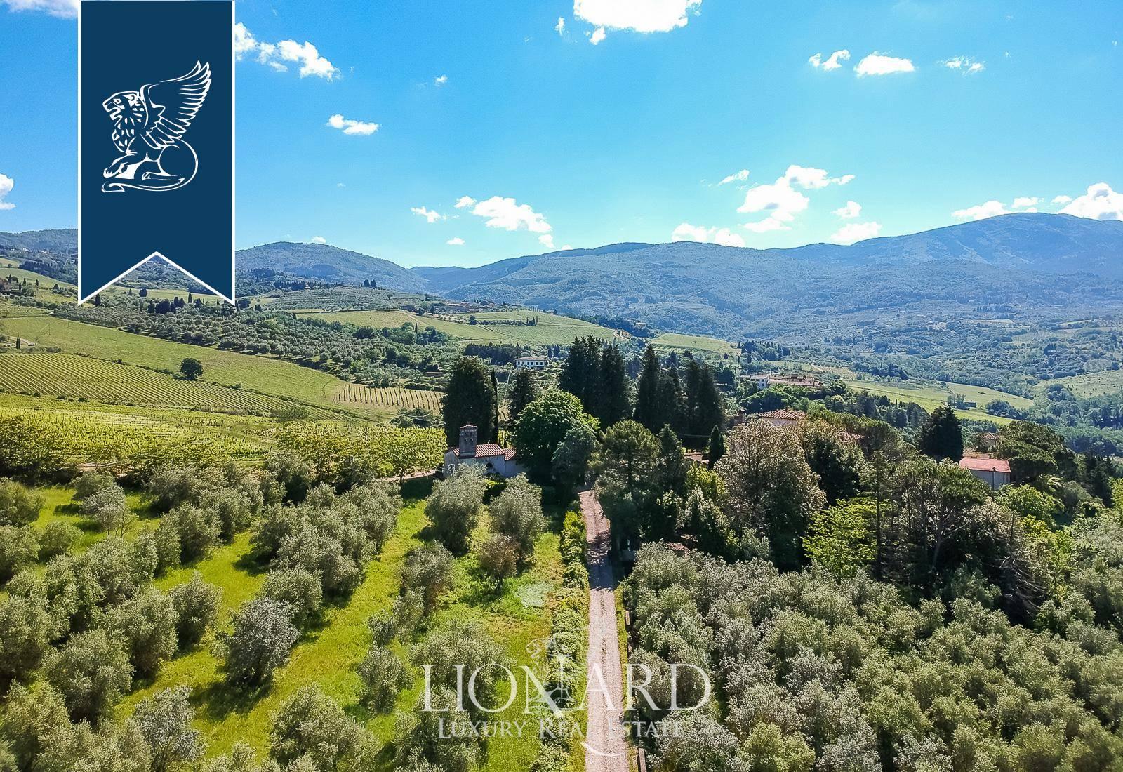 Villa in Vendita a Pelago: 0 locali, 1500 mq - Foto 7