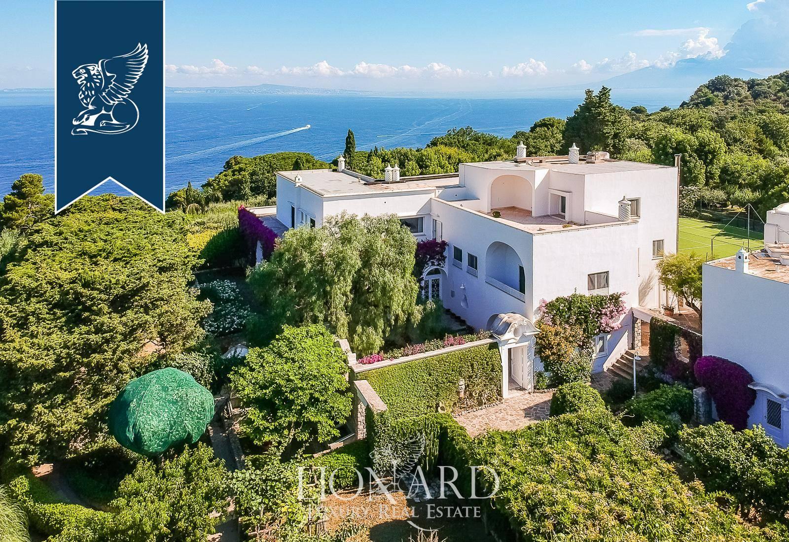 Villa in Vendita a Capri: 0 locali, 1500 mq - Foto 7