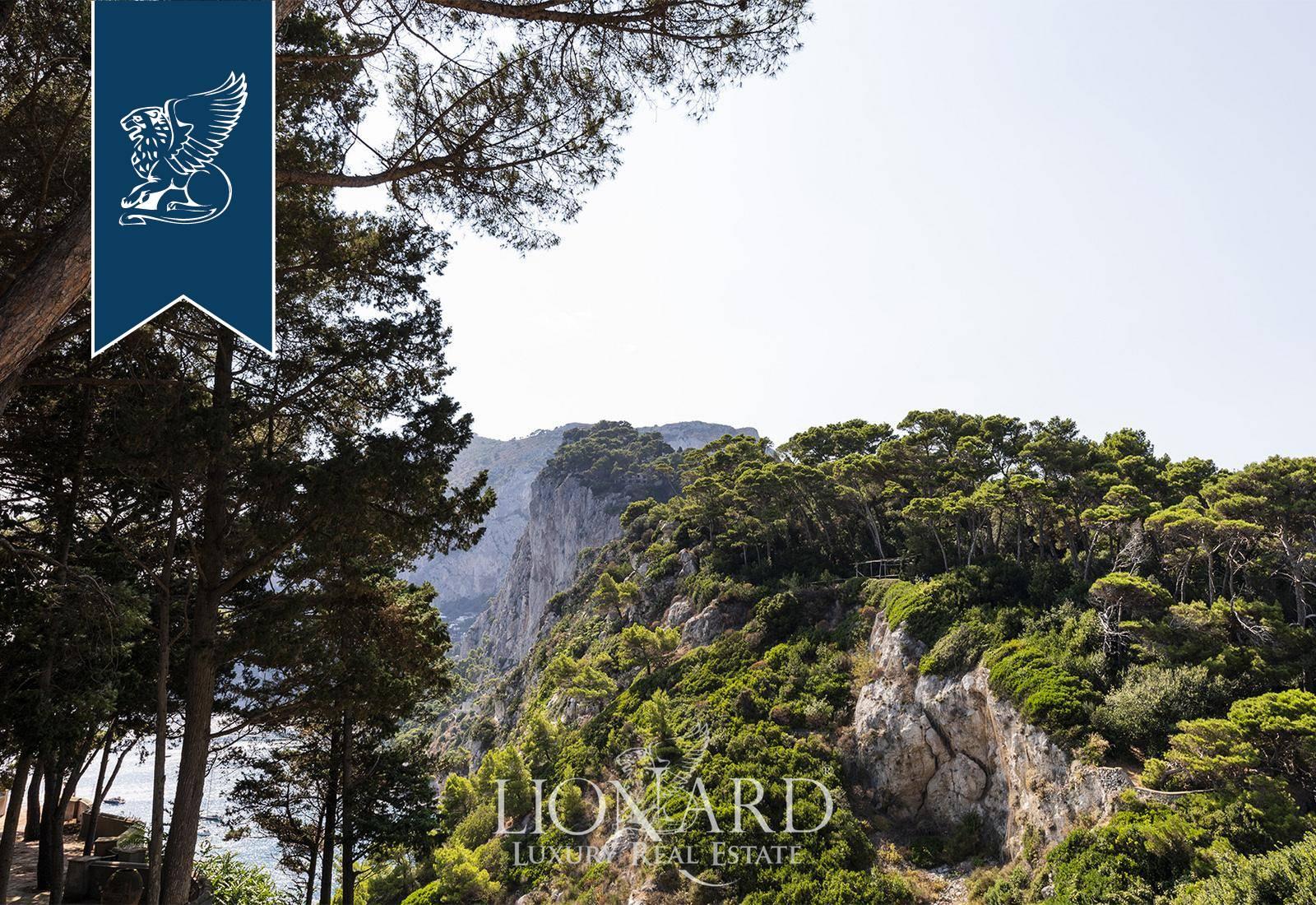 Villa in Vendita a Capri: 0 locali, 260 mq - Foto 4