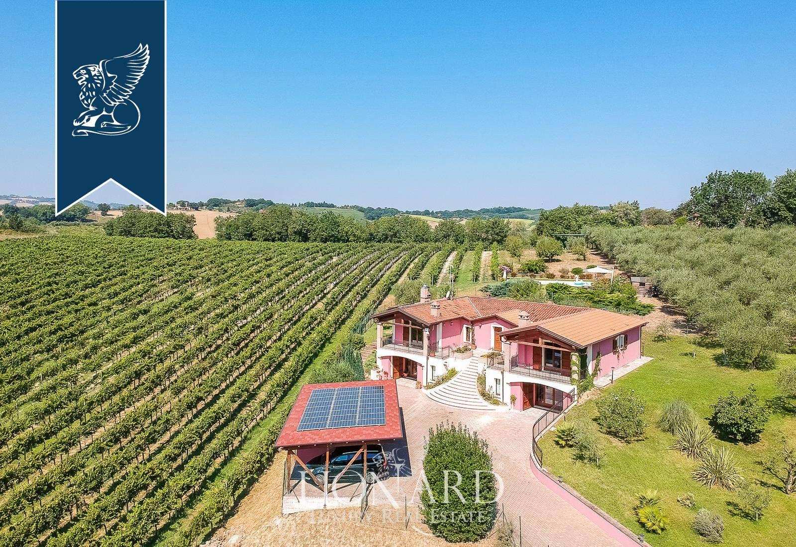 Azienda in Vendita a Pesaro: 0 locali, 600 mq - Foto 4