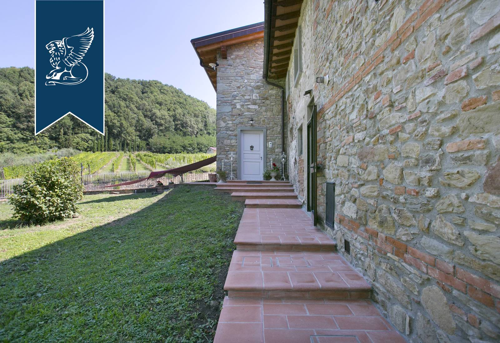 Azienda in Vendita a Vicchio: 0 locali, 1000 mq - Foto 9
