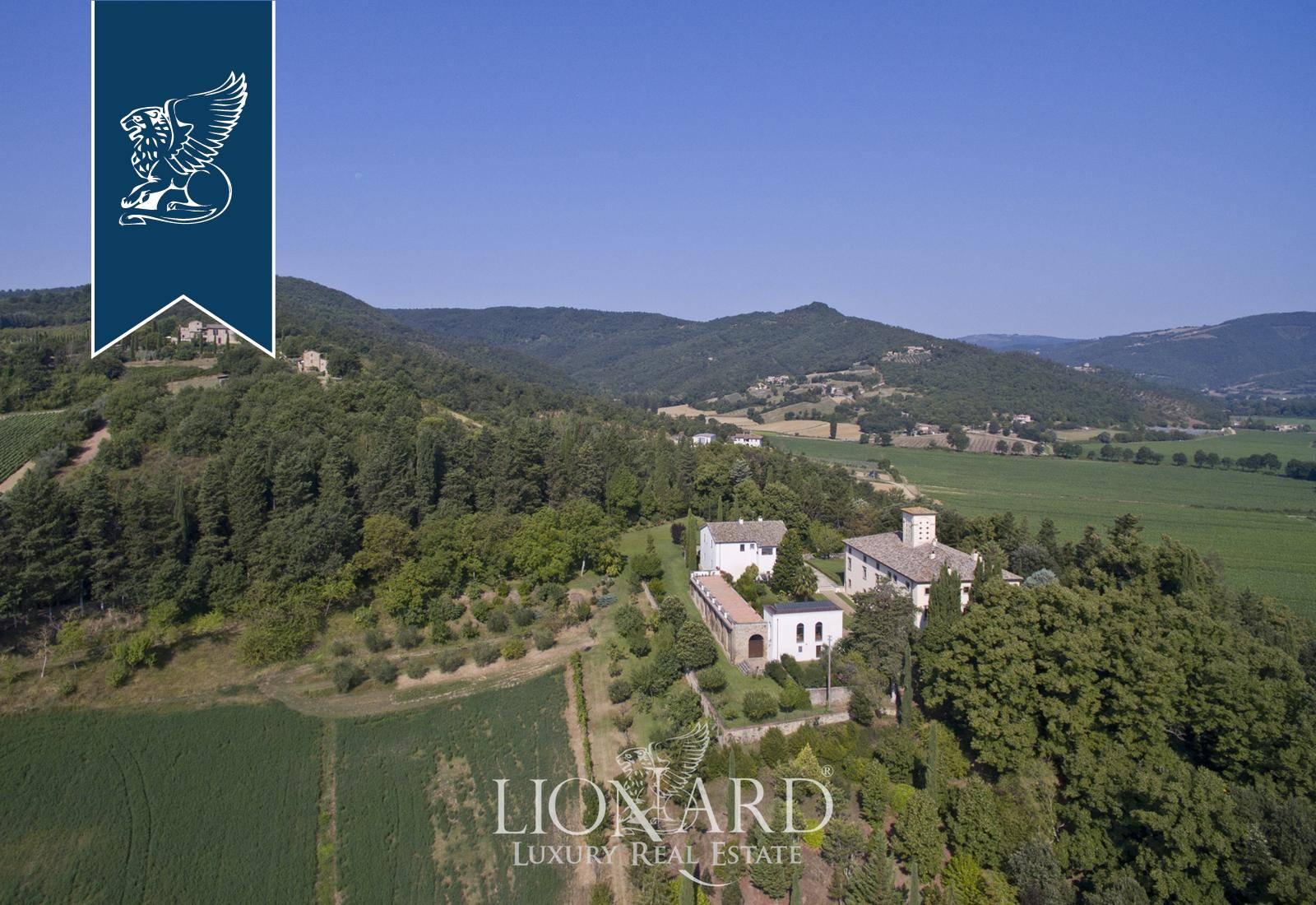 Azienda in Vendita a Citta' Di Castello: 0 locali, 1500 mq - Foto 6