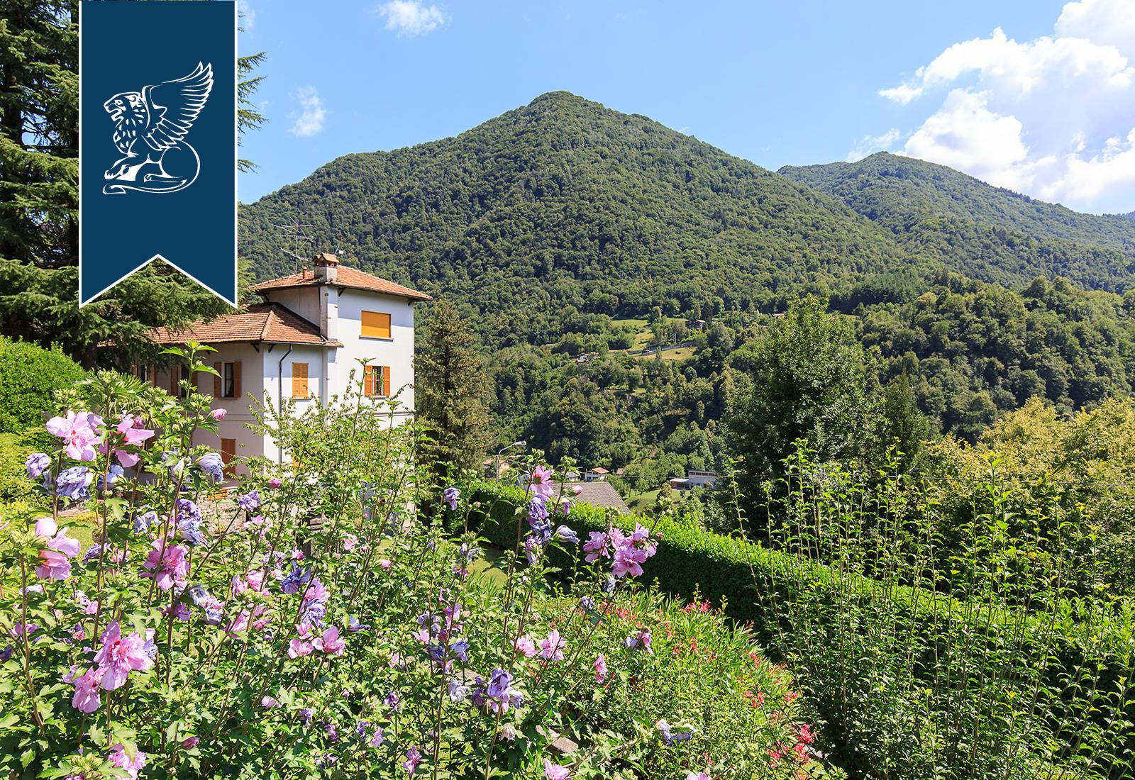 Villa in Vendita a Dizzasco: 0 locali, 550 mq - Foto 3