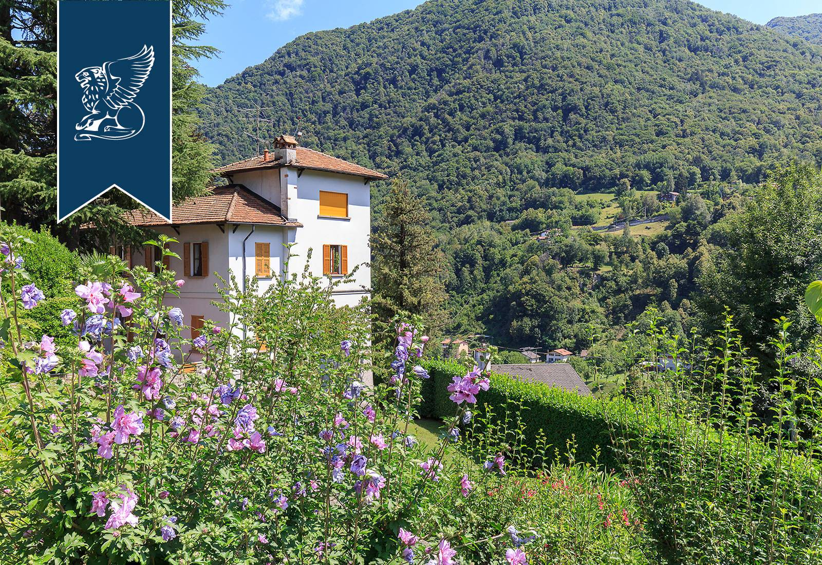 Villa in Vendita a Dizzasco: 0 locali, 550 mq - Foto 9