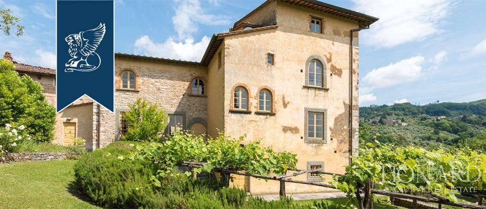 Rustico in Vendita a Lucca: 0 locali, 2000 mq - Foto 8