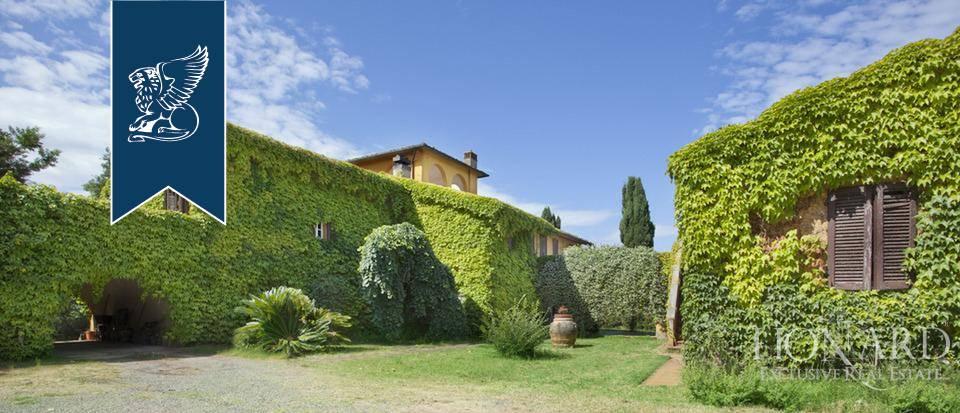 Azienda in Vendita a Montescudaio: 12000 mq