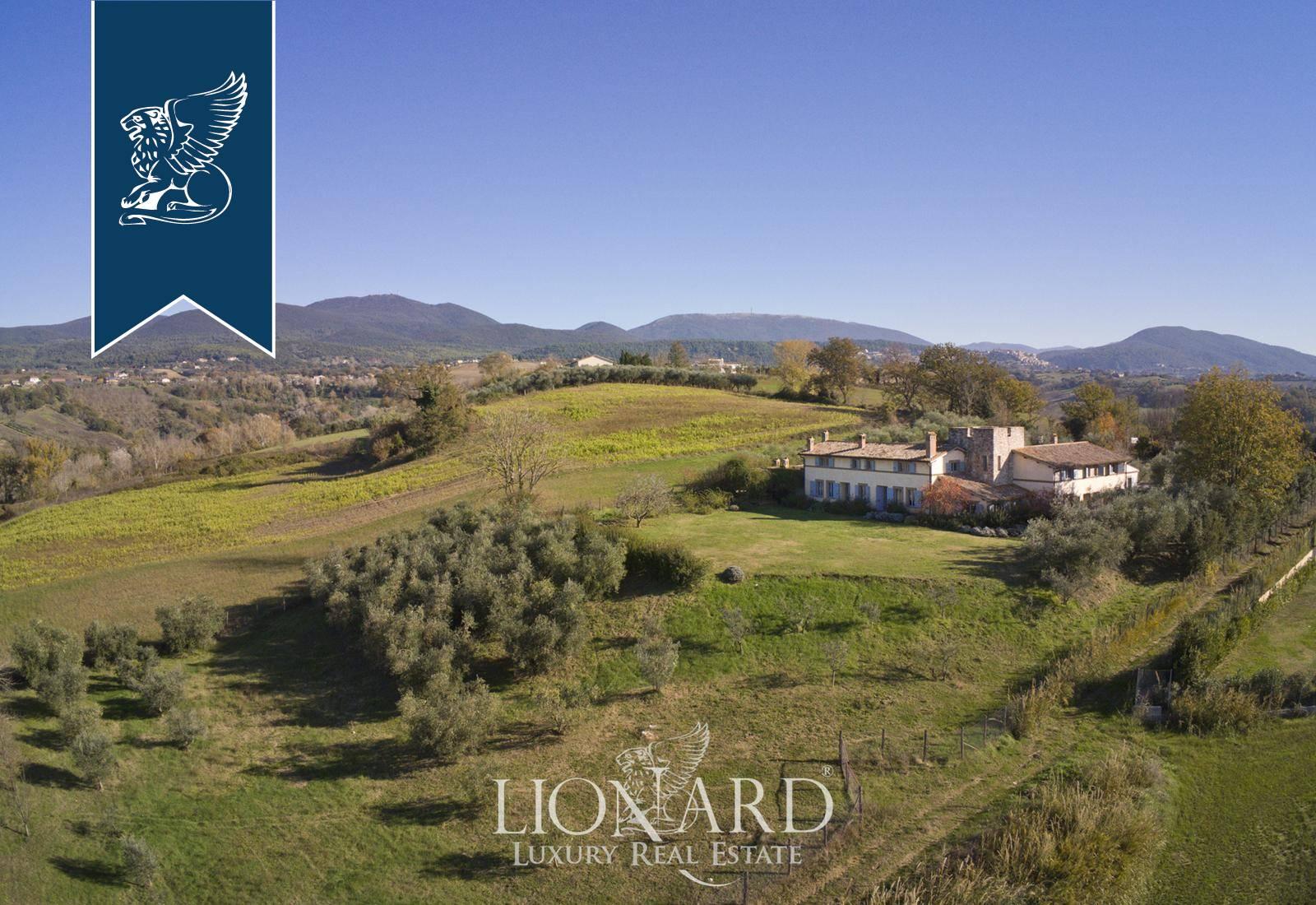 Rustico in Vendita a Calvi Dell'Umbria: 0 locali, 1200 mq - Foto 9