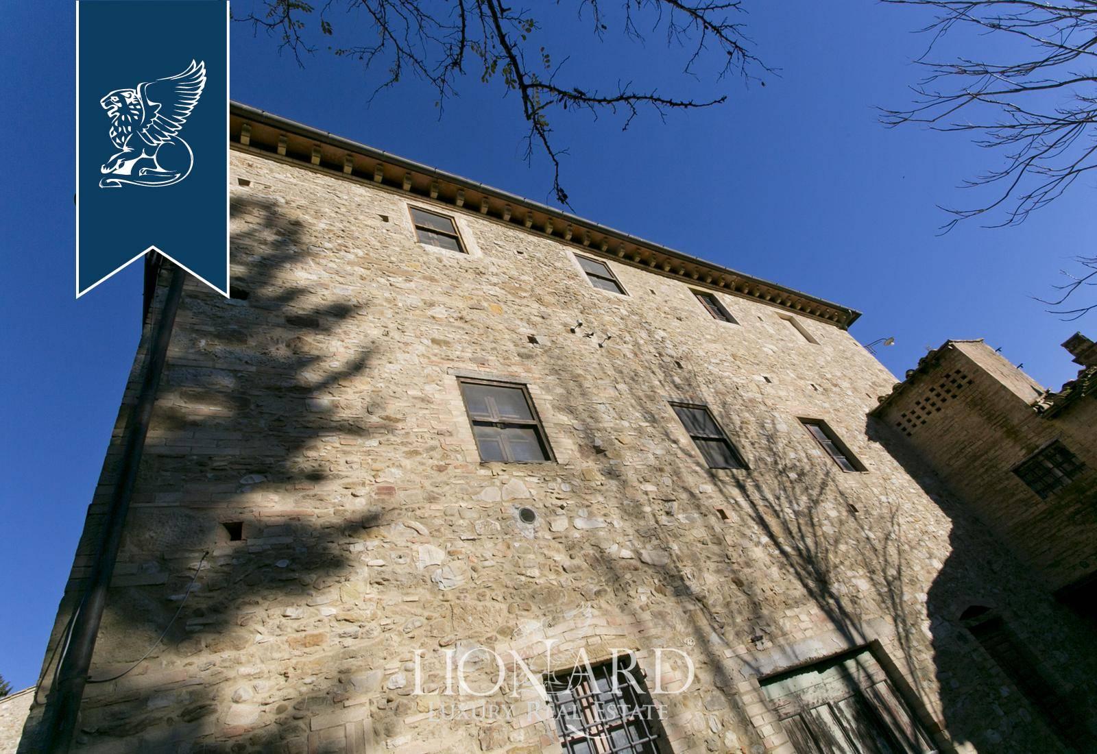 Azienda in Vendita a Castellina In Chianti: 0 locali, 4226 mq - Foto 7
