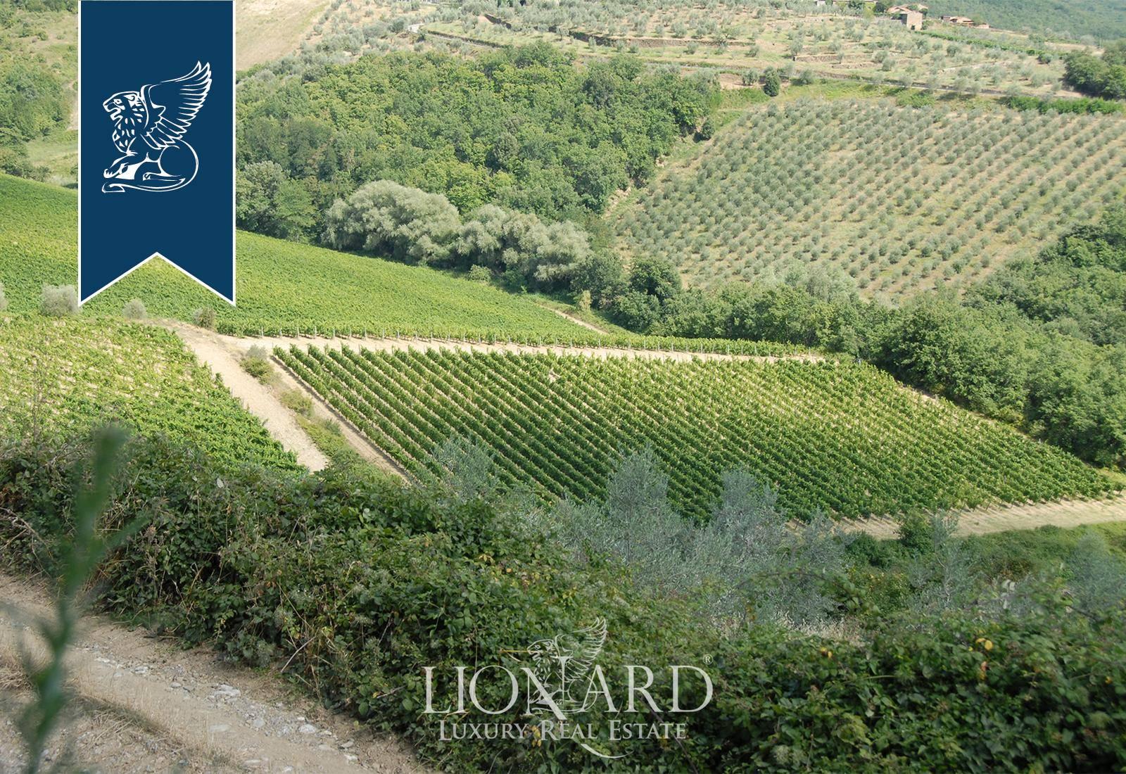 Azienda in Vendita a Gaiole In Chianti: 0 locali, 1500 mq - Foto 6