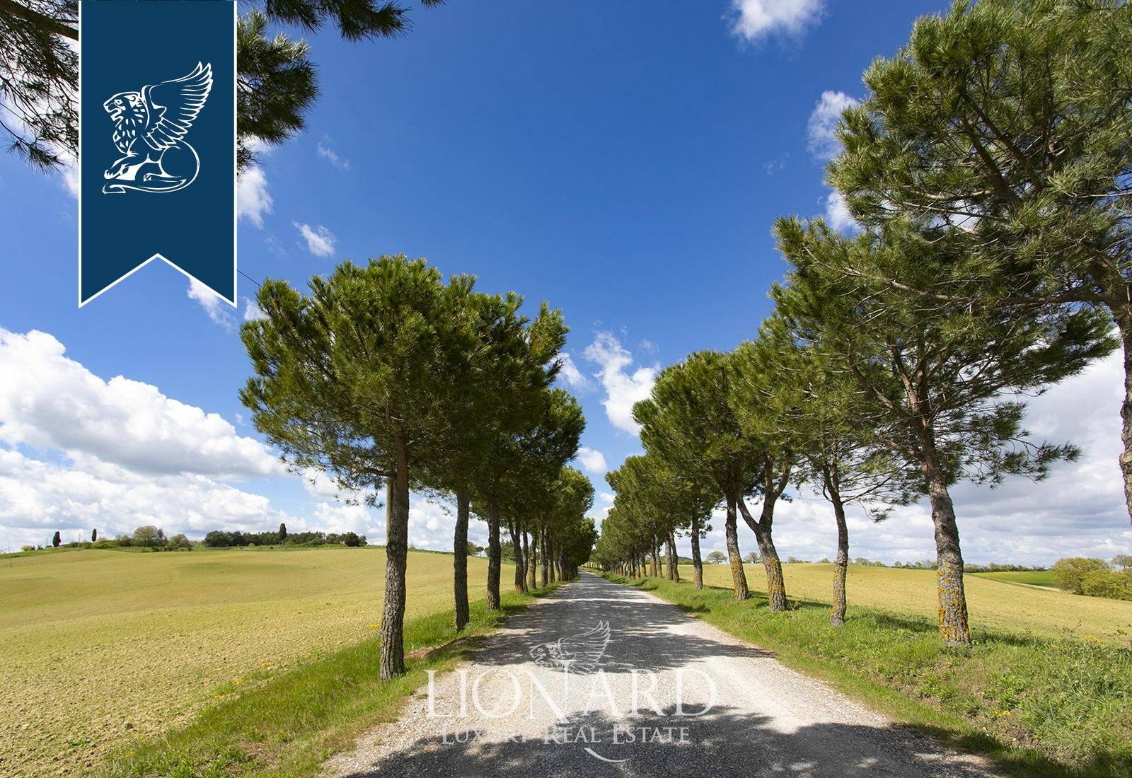 Agriturismo in Vendita a Montepulciano: 0 locali, 700 mq - Foto 4