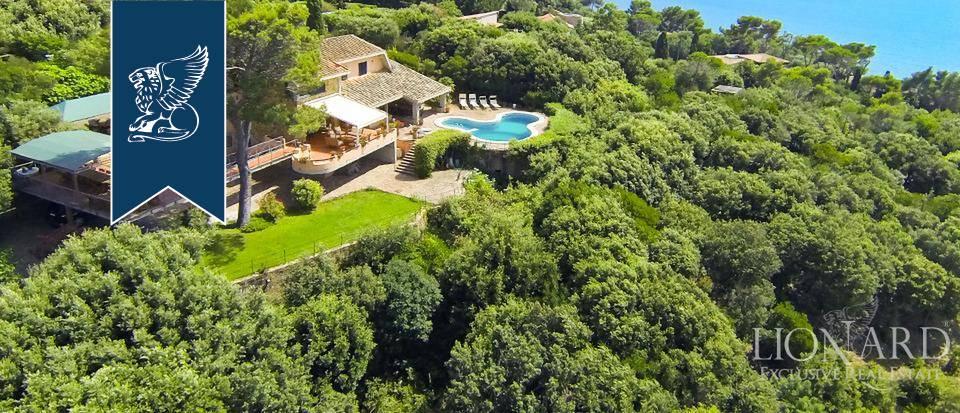 Villa in Vendita a Orbetello: 0 locali, 500 mq - Foto 5