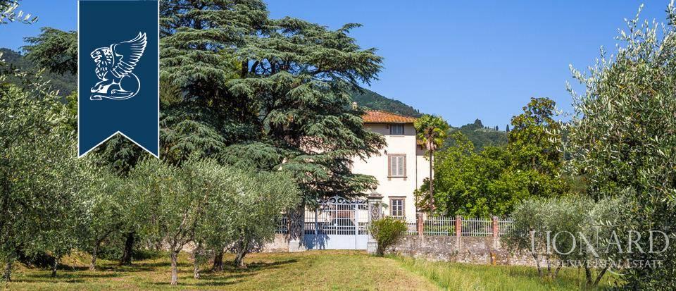 Villa in Vendita a Lucca: 0 locali, 1440 mq - Foto 9