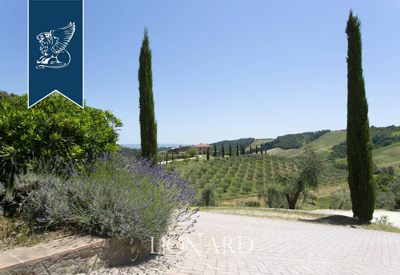 Azienda in Vendita a San Gimignano: 0 locali, 2000 mq - Foto 5