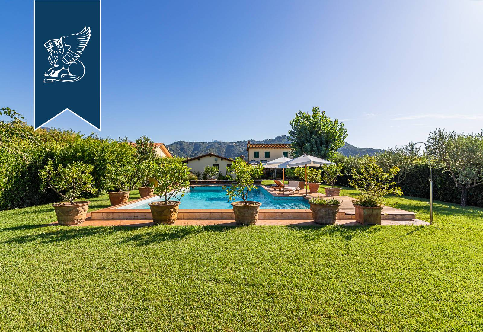 Villa in Vendita a Massarosa: 0 locali, 530 mq - Foto 7