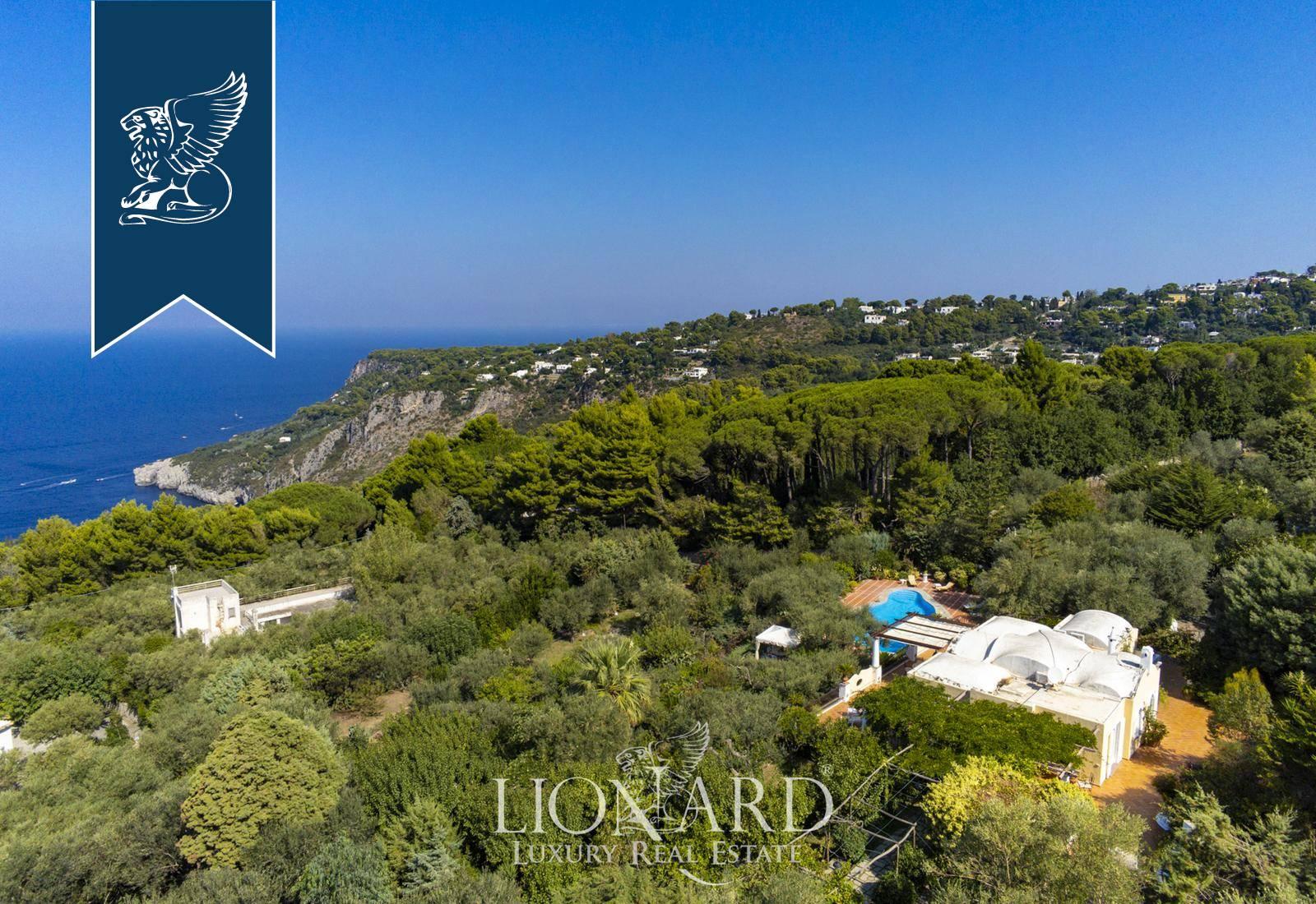 Villa in Vendita a Anacapri: 0 locali, 299 mq - Foto 4