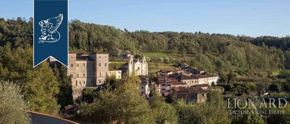 Villa in Vendita a Massa: 0 locali, 1000 mq - Foto 5
