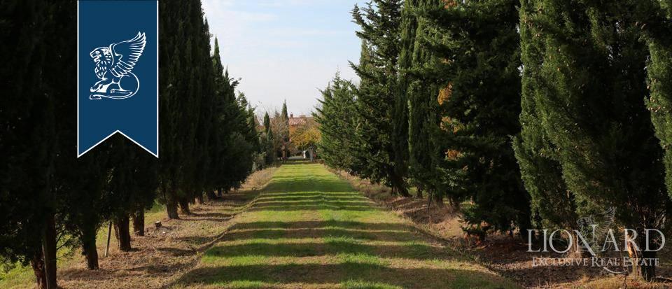 Agriturismo in Vendita a Rosignano Marittimo: 0 locali, 650 mq - Foto 8