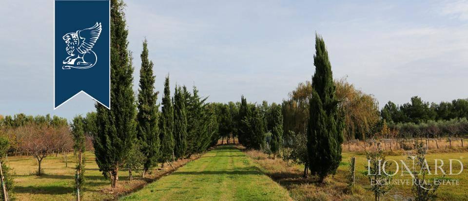 Agriturismo in Vendita a Rosignano Marittimo: 0 locali, 650 mq - Foto 7