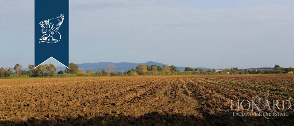 Agriturismo in Vendita a Rosignano Marittimo: 0 locali, 650 mq - Foto 6