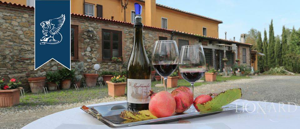 Agriturismo in Vendita a Rosignano Marittimo: 0 locali, 650 mq - Foto 2