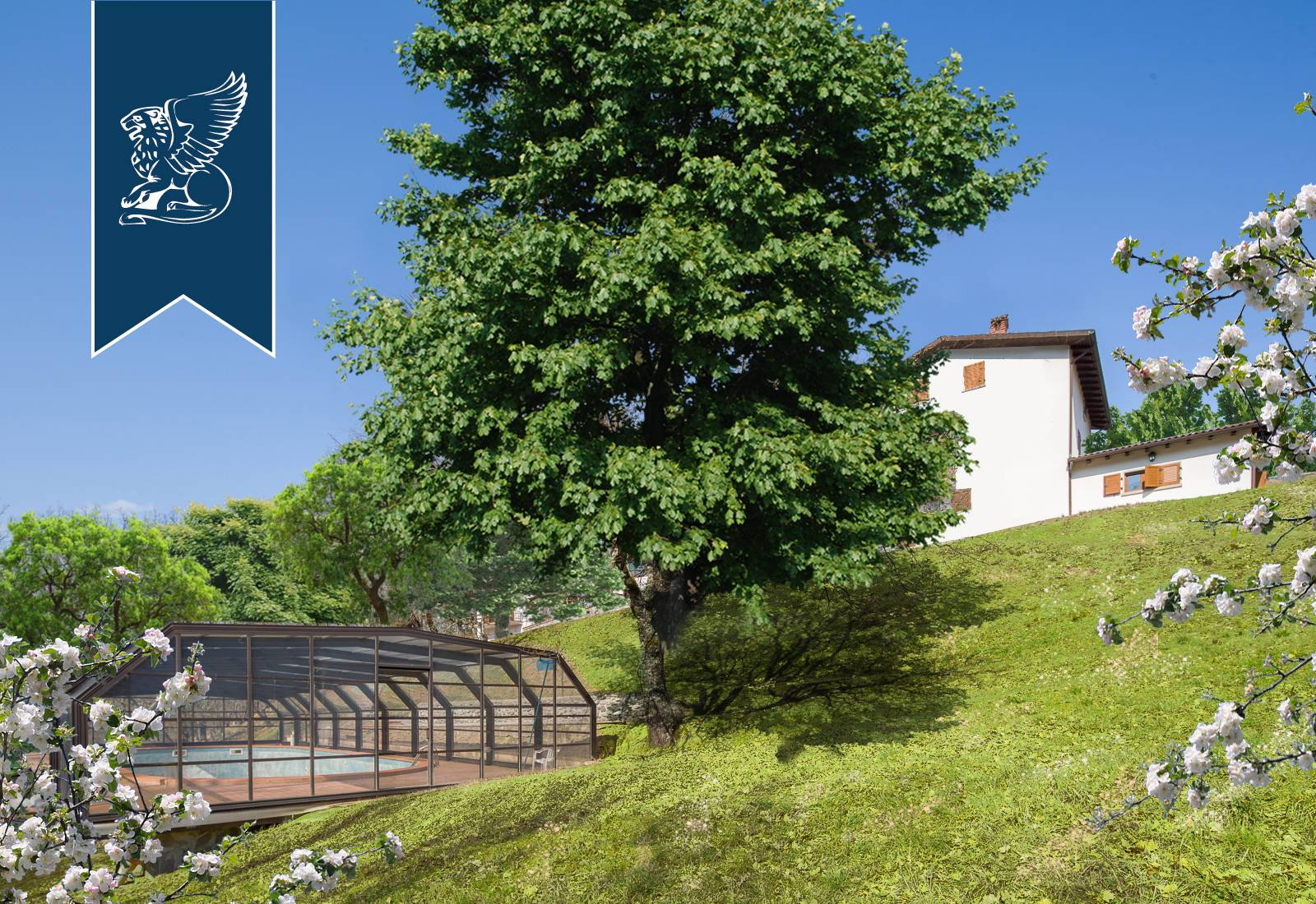 Villa in Vendita a Massa: 611 mq