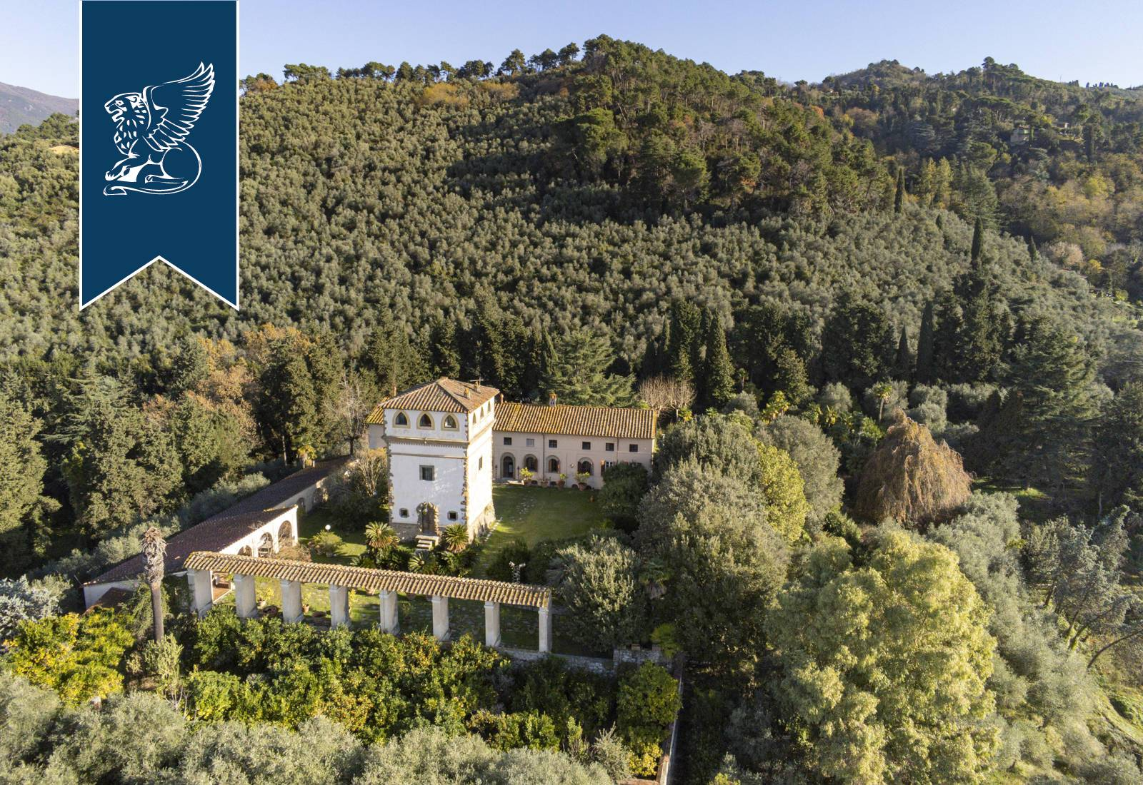 Villa in Vendita a Camaiore: 0 locali, 3080 mq - Foto 4