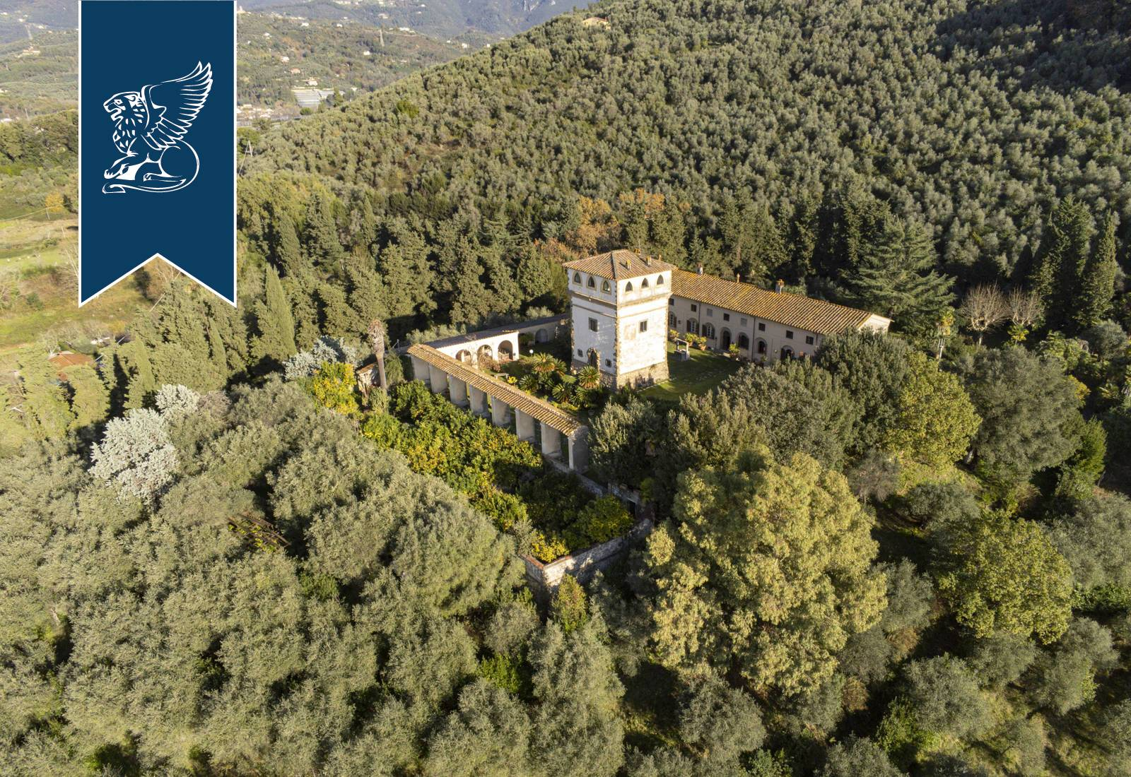 Villa in Vendita a Camaiore: 0 locali, 3080 mq - Foto 5