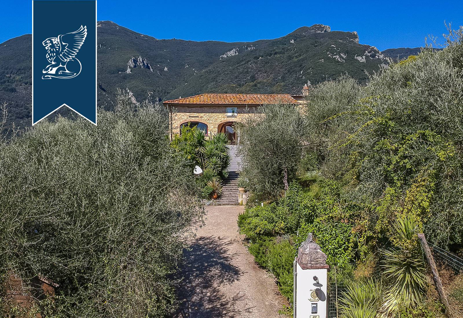 Villa in Vendita a Camaiore: 0 locali, 360 mq - Foto 5