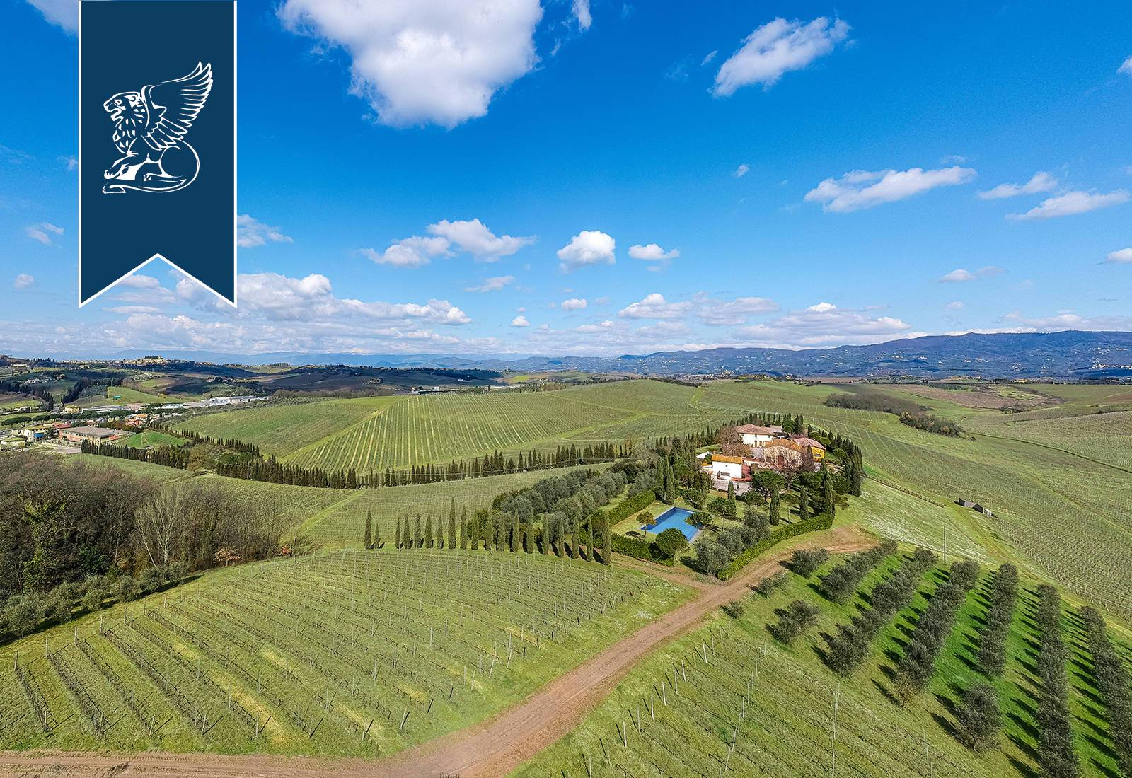 Villa in Vendita a Vinci: 2120 mq