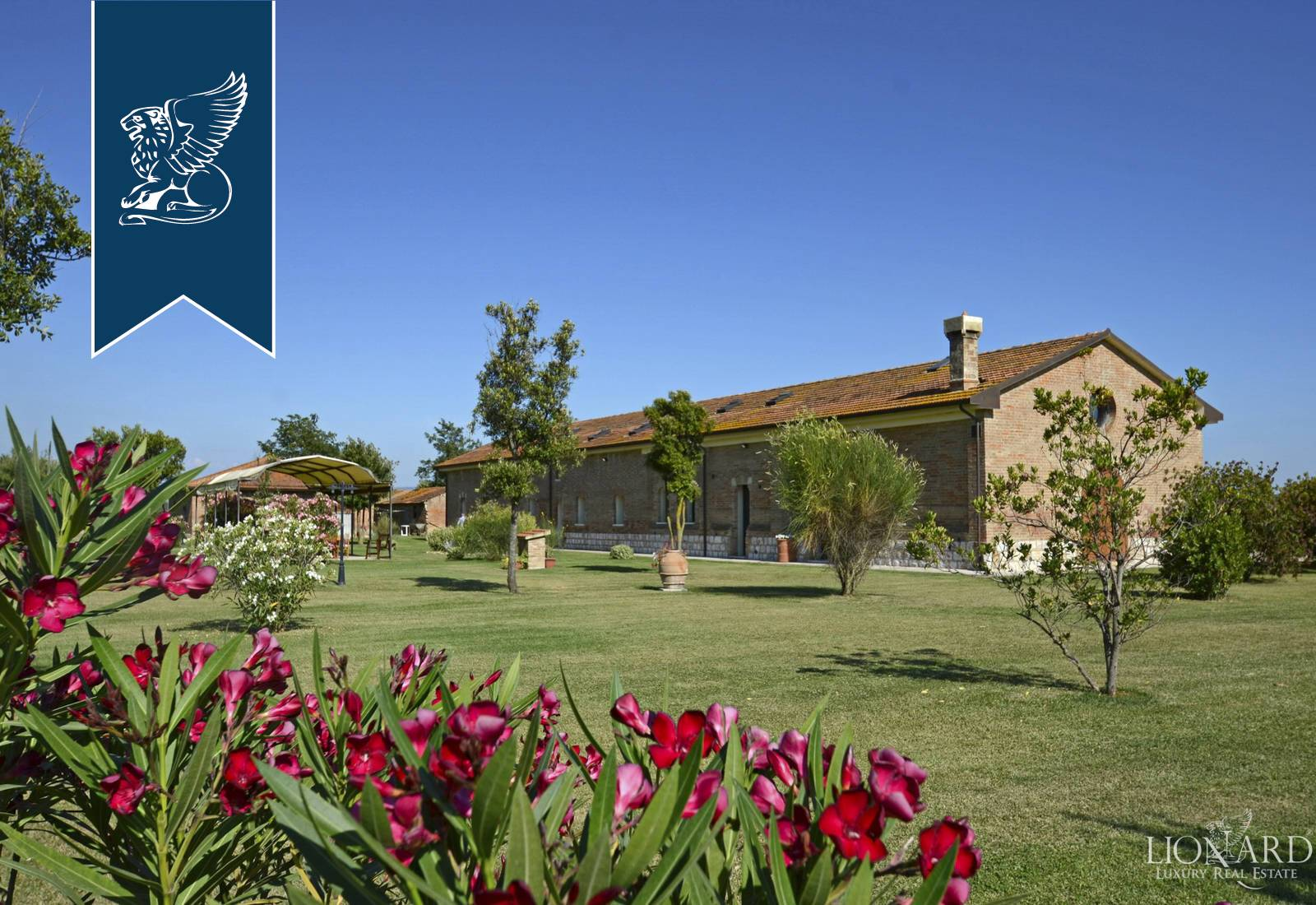 Azienda in Vendita a Grosseto: 880 mq
