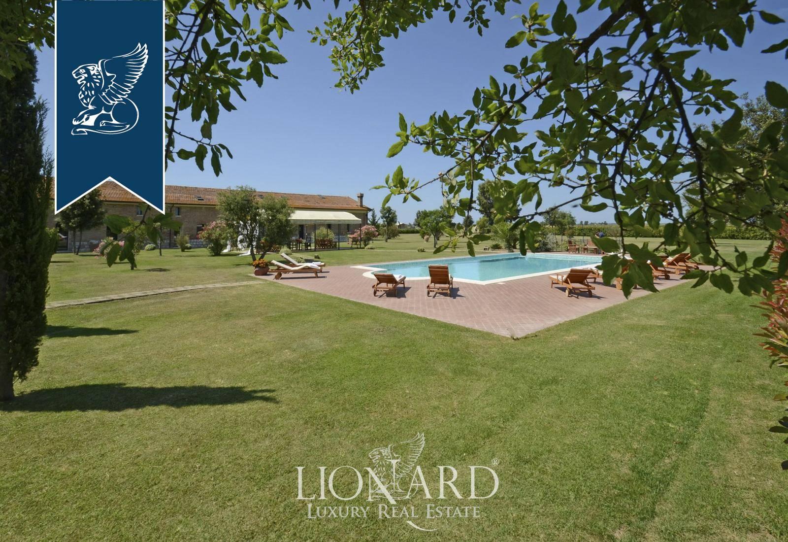 Azienda in Vendita a Grosseto: 0 locali, 880 mq - Foto 4