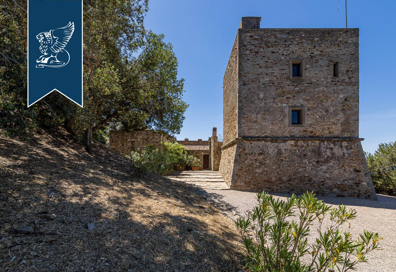 Villa in Vendita a Orbetello: 0 locali, 350 mq - Foto 3