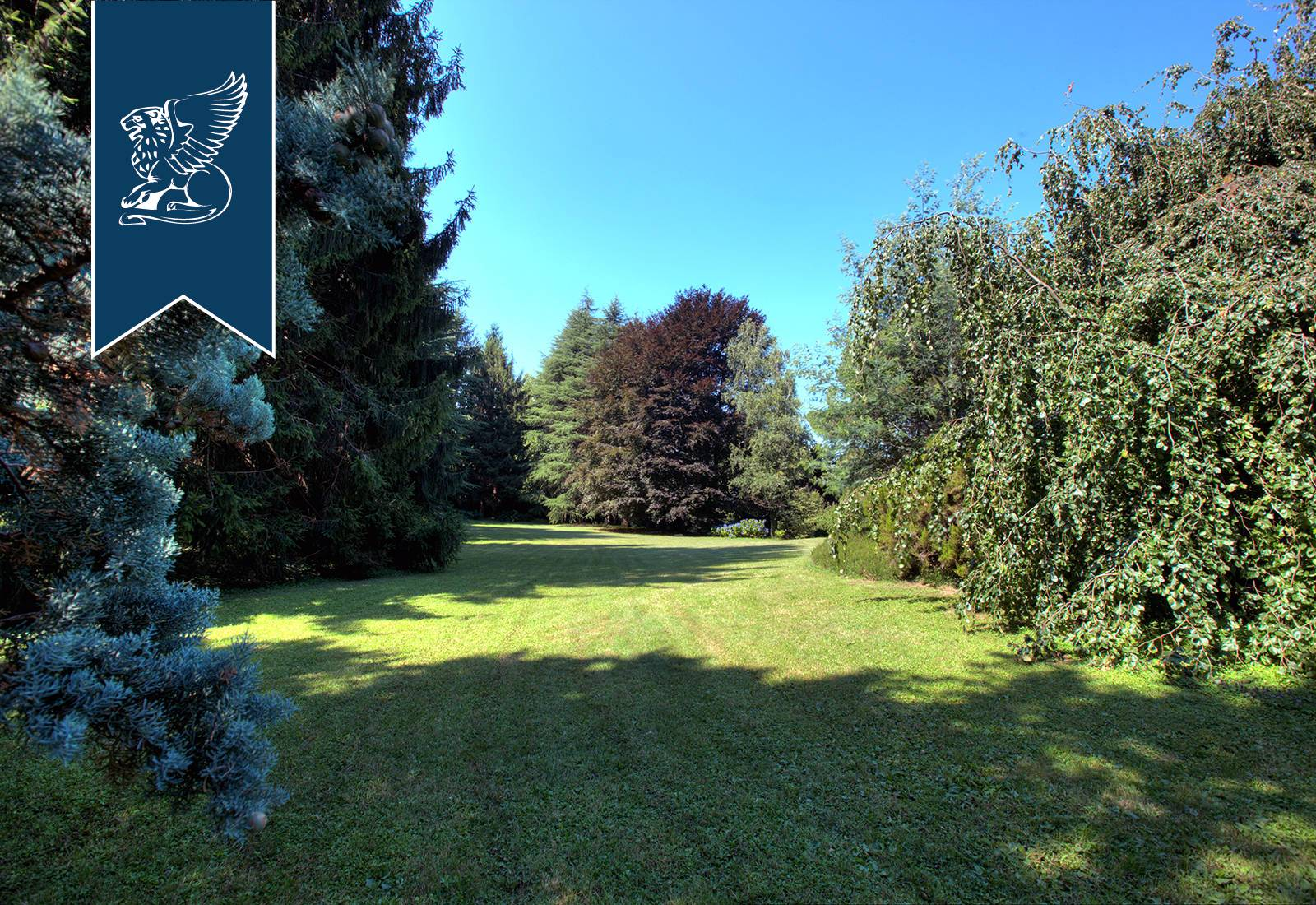 Villa in Vendita a Oggiono: 0 locali, 500 mq - Foto 5