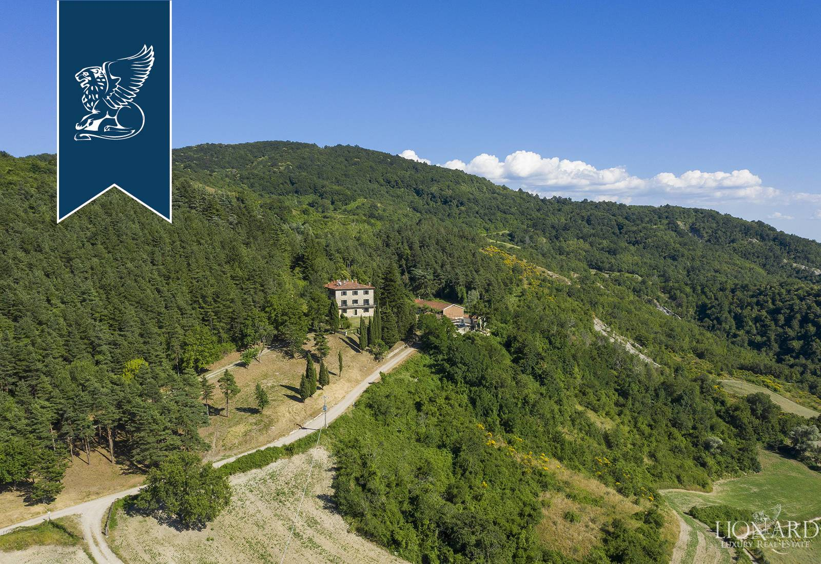 Agriturismo in Vendita a Borgo San Lorenzo: 0 locali, 1000 mq - Foto 4