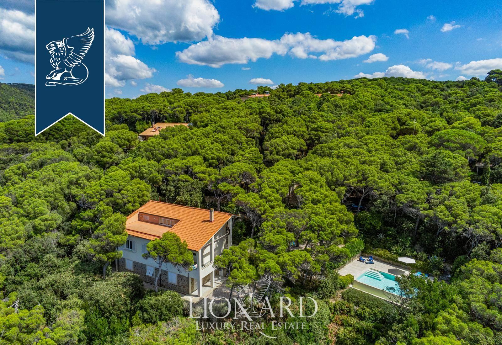 Villa in Vendita a Rosignano Marittimo: 0 locali, 300 mq - Foto 7